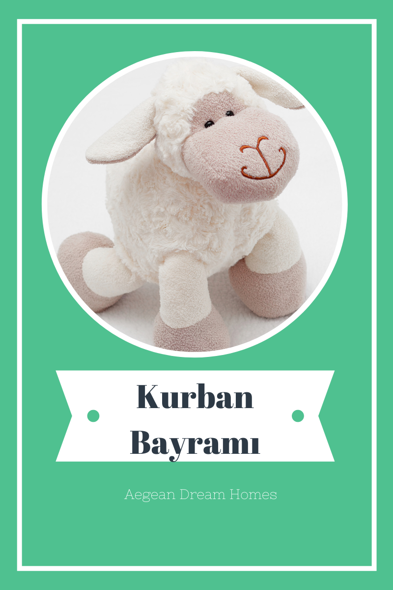 Blog banner. Picture of cuddly sheep. Text overylay reads: Kurban Bayramı. Aegean Dream Homes