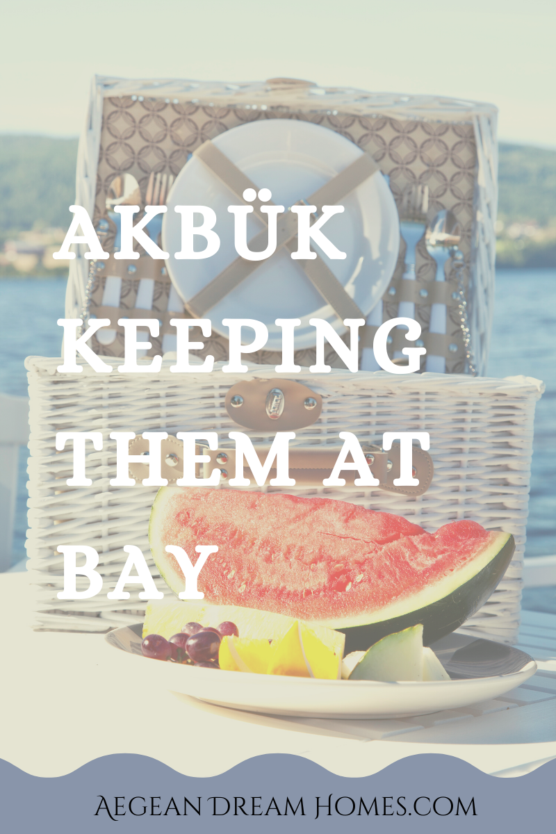 Akbuk resort banner. Picture of picnic in the bay. Text overlay reads: Akbük keeping them at bay.. Aegean Dream Homes.com