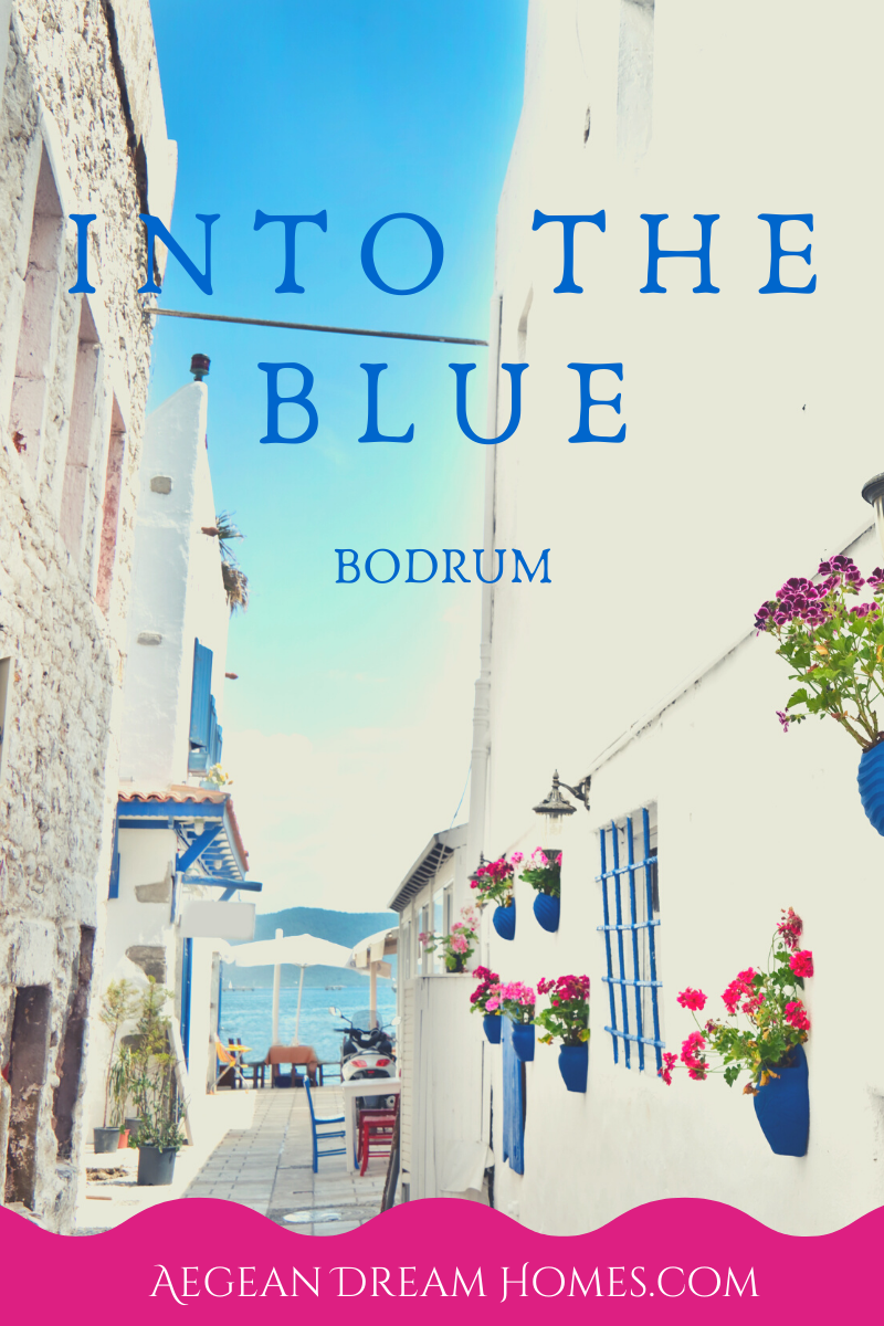 Bodrum property for sale banner. Text overlay reads: Into the blue. Bodrum. Aegean Dream Homes